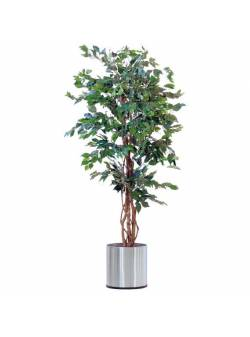 Planta artificiala Ficus Benjamini, trunchi natural, H 170 cm